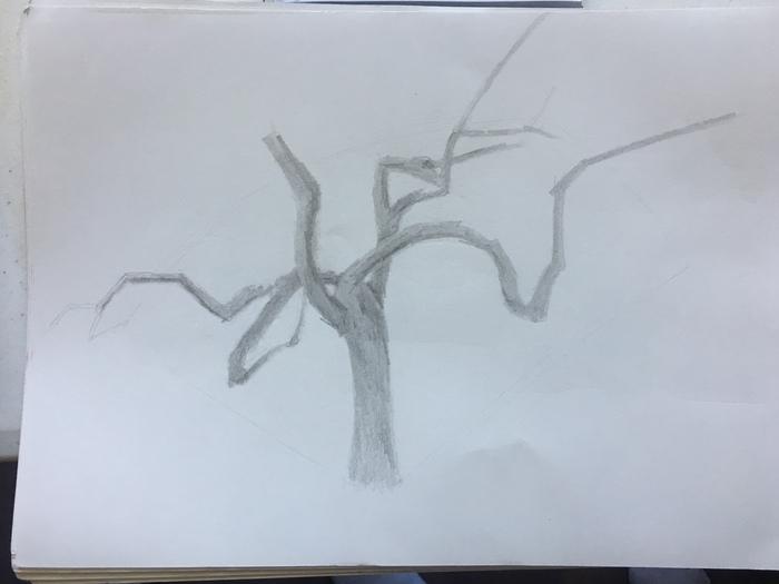 Outside Sketch 1