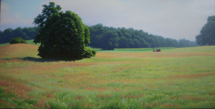 Beal's Farm, Sunny